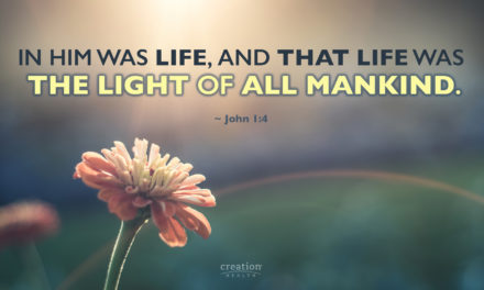 THE LIGHT OF MANKIND
