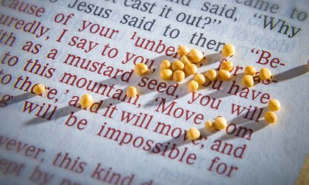 A SEED OF FAITH
